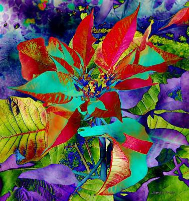 Digital Art - Digital Poinsettia by Jamie Frier