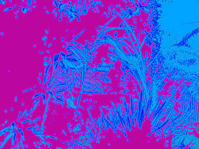 Digital Visual Art Print by HollyWood Creation By linda zanini