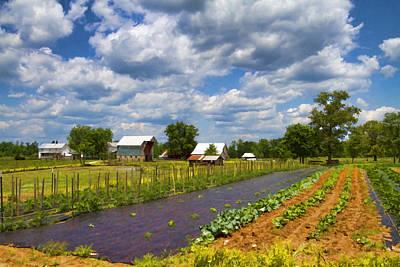 Ethridge Photograph - Digitally Painted Amish Farm by Kathy Clark