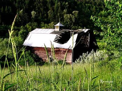 Photograph - Dilapidated Barn by Sadie Reneau