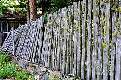 Photograph - Dilapidated Fence by Patrick Witz