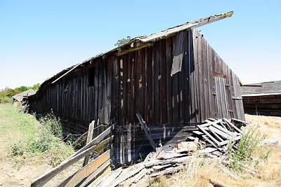 Photograph - Dilapidated Ranch In Petaluma California 5d24415 by Wingsdomain Art and Photography