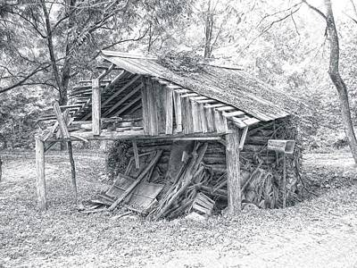 Photograph - Dilapidated Shed by Joe Duket