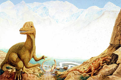 Paleozoology Photograph - Dilophosaurus Dinosaur by Deagostini/uig