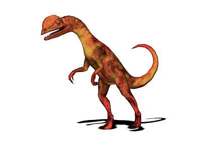 Paleozoology Photograph - Dilophosaurus Dinosaur by Friedrich Saurer