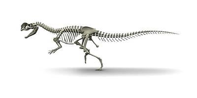 Paleozoology Photograph - Dilophosaurus Dinosaur by Jose Antonio Pe�as