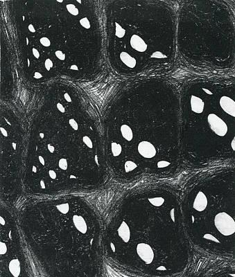 Dimensions Art Print by Mike Rhineheart