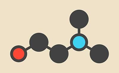 Dimethylaminoethanol Molecule Art Print by Molekuul