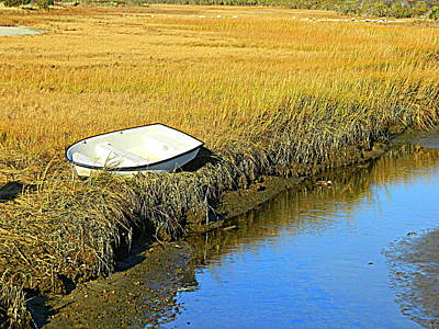 Photograph - Squibnocket Dinghy, Duck, Stream by Kathy Barney