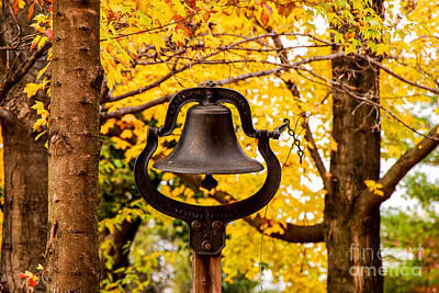 Photograph - Dinner Bell by Mary Carol Story