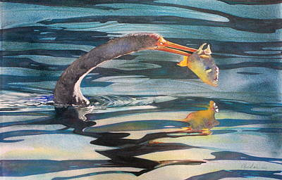 Anhinga Painting - Dinner by Kitty Harvill