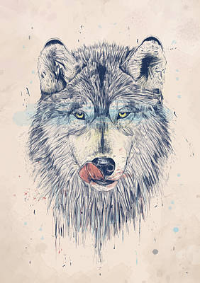 Wolf Drawing - Dinner Time by Balazs Solti