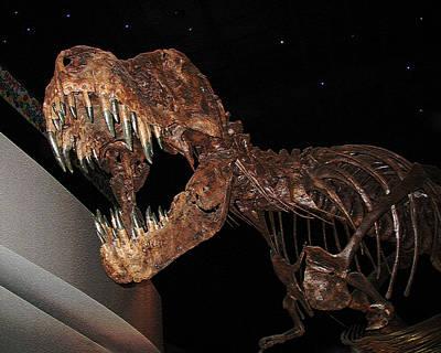 Photograph - Dinosaur Dental Work by Connie Fox
