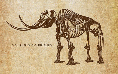 Bird Skeleton Digital Art - Dinosaur Mastodon Americanus by Aged Pixel