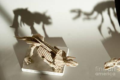 Dinosaur Park Art Print by Golden Section
