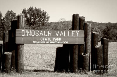 Photograph - Dinosaur Valley State Park Texas by Imagery by Charly