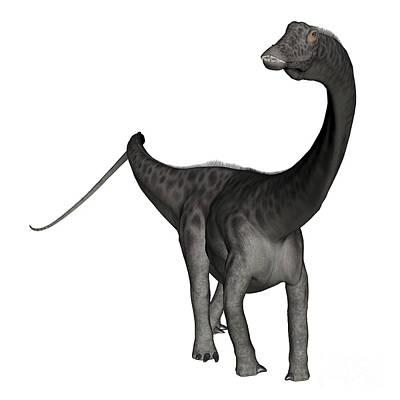 Diplodocus Dinosaur Art Print by Elena Duvernay