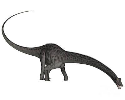 Diplodocus Dinosaur With Head Down Art Print by Elena Duvernay
