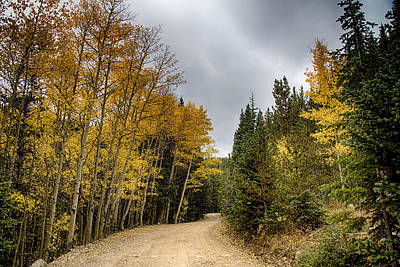 Photograph - Dirt Road Autumn Cruising by James BO  Insogna