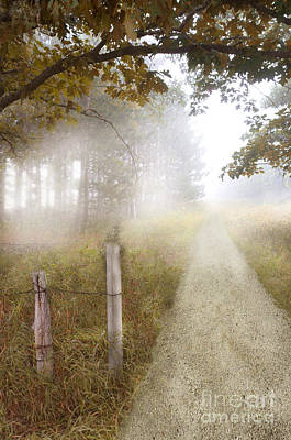 Dirt Road In Fog Art Print by Jill Battaglia