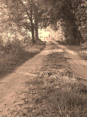 Photograph - Dirt Road In Moultrie Georgia by Cleaster Cotton
