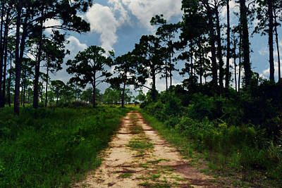 Photograph - Dirt Road Into The Horizon by Amber Summerow