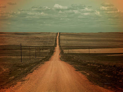 Photograph - Dirt Road by Leland D Howard
