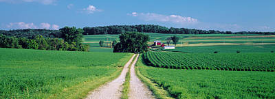 Dirt Roads Photograph - Dirt Road Passing Through A Farm by Panoramic Images