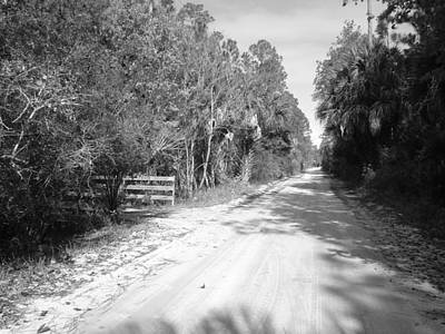 Photograph - Dirt Road Welcome by Cheryl Waugh Whitney