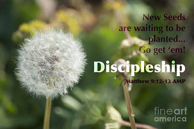 Discipleship Photograph - Discipleship by Affini Woodley