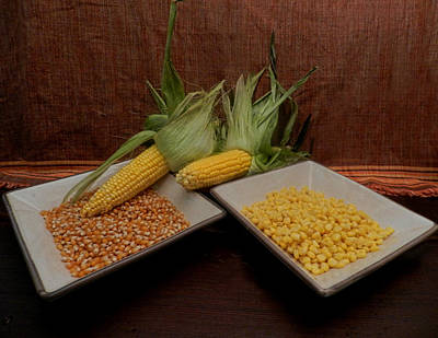 Marvelous Marble - Dishes of Corn and Cobs by Grace Dillon
