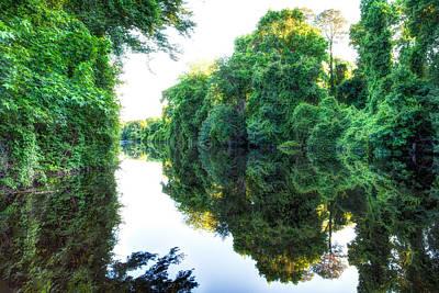 Dismal Swamp Canal Art Print