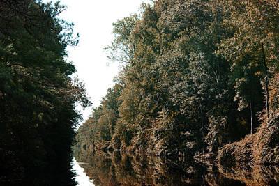 Dismal Swamp Canal Art Print by Rebecca Davis