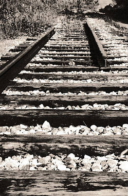 Photograph - Dismantled Railway by Arkady Kunysz