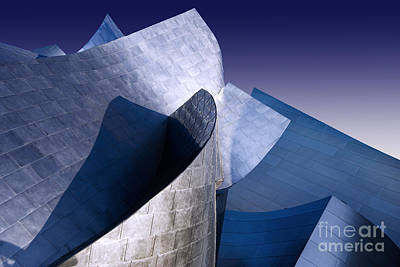 Disney Hall La Art Print