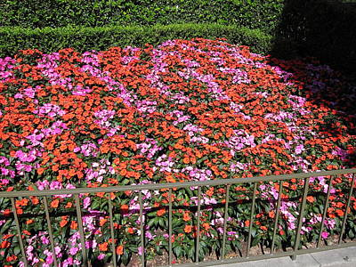 Disneyland Park Anaheim - 121215 Art Print
