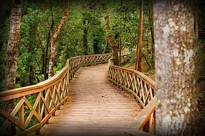 Rickety Bridge Photograph - Disorted Bridge by Sonia Emerton