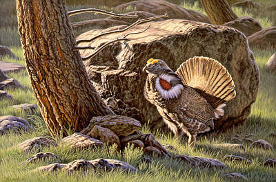 Yellowstone Painting - Displaying--blue Grouse by Paul Krapf