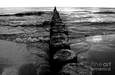 Distant Seagull Baltic Beach Art Print