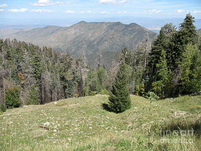 Coronado National Forest Photograph - Distant View - Mount Lemmon by Christiane Schulze Art And Photography