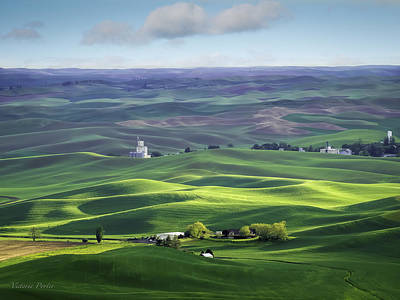 Photograph - Distant Vista From Steptoe Butte by Victoria Porter