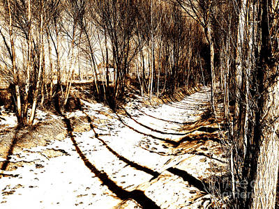 Photograph - Ditch And Trees by Ethna Gillespie