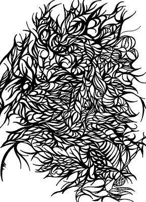 Contemporary Abstract Drawing - Divergant by Jamie Lynn