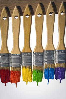 Photograph - Diversity Paint Brushes Vertical by Don McGillis