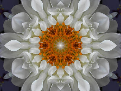 Digital Art - Divine Love Flower Mandala by Diane Lynn Hix