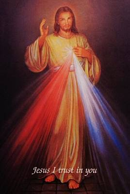 Divine Mercy Photograph - Divine Mercy Big File by Anna Baker