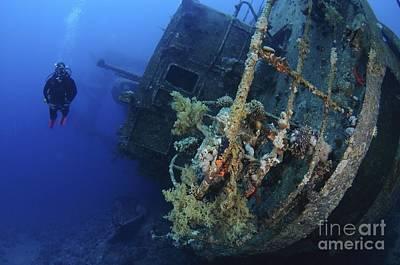 Aqaba Photograph - Diving At Aqaba - Red Sea by Photostock-israel