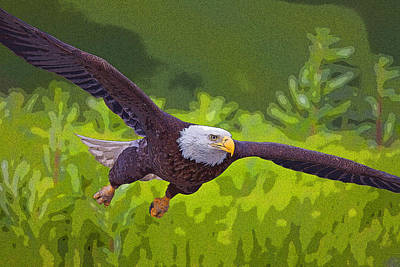 Eagle Digital Art - Diving For Dinner- Abstract by Tim Grams
