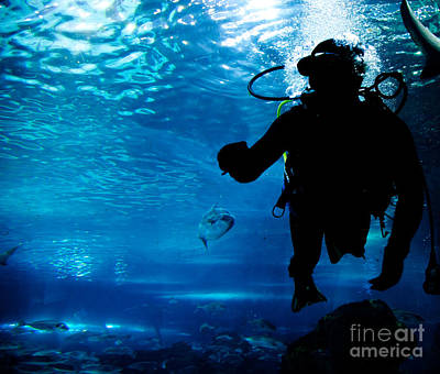 Cave Photograph - Diving In The Ocean Underwater by Michal Bednarek