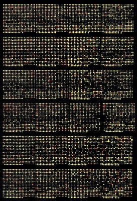Dna Microarrays Art Print by National Human Genome Institute